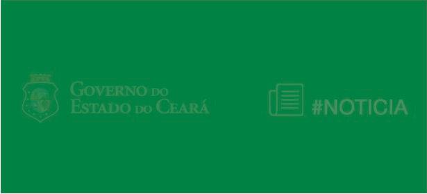 Como visualizar o Diário Oficial